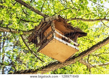 Wooden bird house hanging on the green tree. Seasonal natural scene. Beauty in nature. Ornithology theme. Detailed natural scene. View from the bottom up.