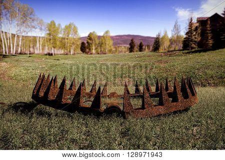 3d illustration of a bear trap on green grass