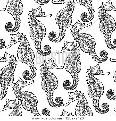 Graphic Leafy Seadragon drawn in a line art style. Sea horse. Ocean seamless pattern. Coloring book page design
