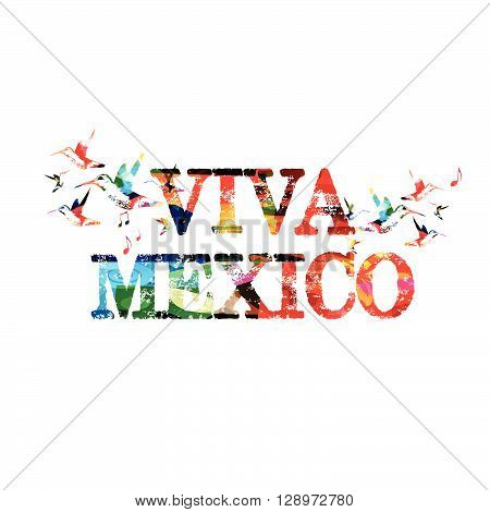 Vector illustration of colorful viva mexico inscription