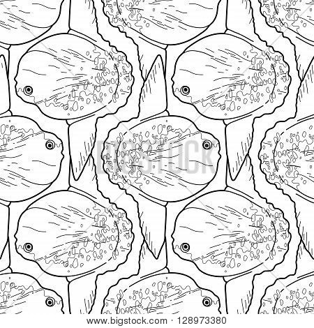 Graphic vector sunfish isolated on white background. Sea and ocean creature in black and white colors. Coloring book page design