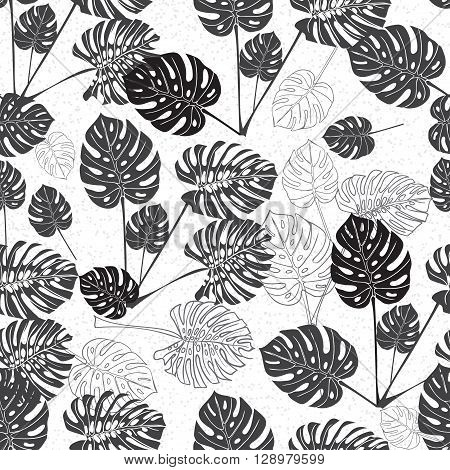 Tropical monstera leaves. silhouette drawing Seamless background black and white. Vector illustration