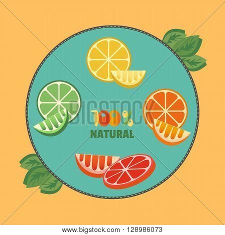 Citrus Fruits. Sliced lemon lime orange grapefruit leaves. Fresh lemon wedges Concept. Organic fruits natural. Tropical citrus. Natural fruit with vitamin for juice dessert. Vector Illustration