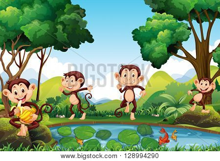 Four monkeys by the pond illustration