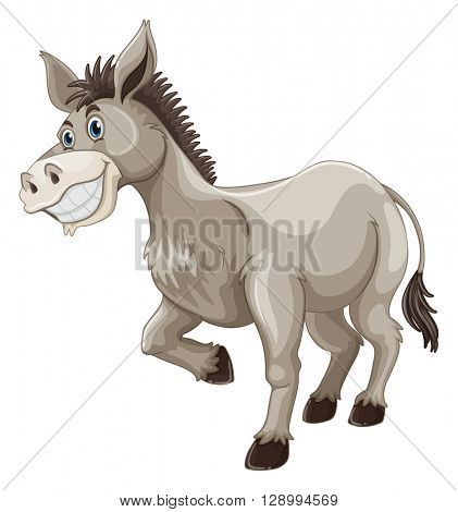 Donkey with silly face illustration