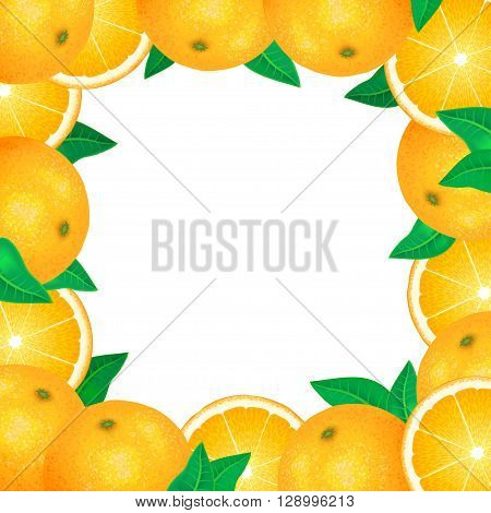 Frame of fresh oranges. Natural bio fruits healthy organic food. Realistic vector illustration