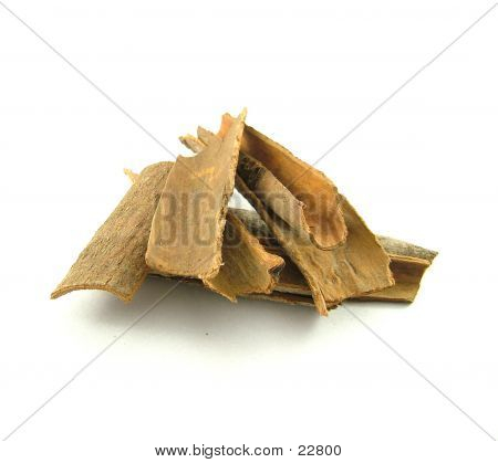 Dalchini (Cinnamon)