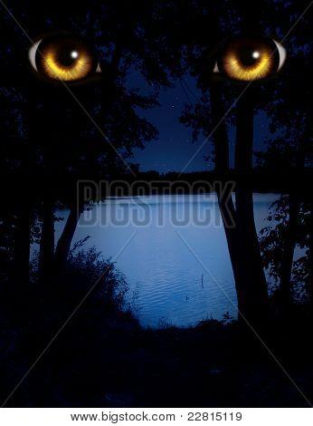 Dark series - a look from darkness