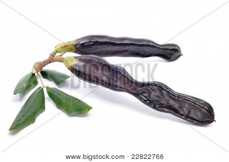 a pair of ripe carobs on a white background