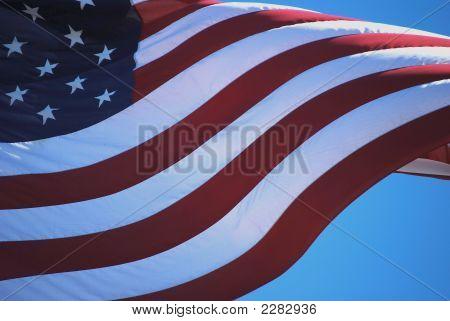 Flag Vii (J.F.K.)