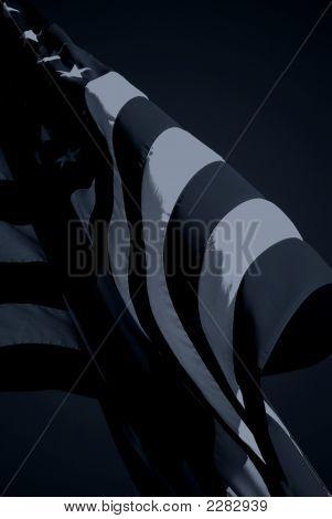 Black Flag Ii (Spock)