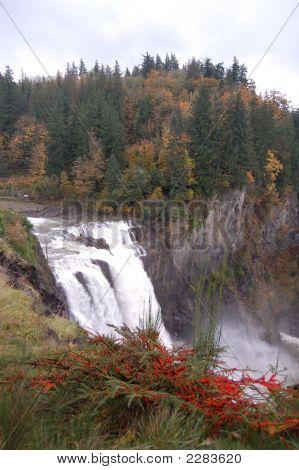 Fallsinautumn