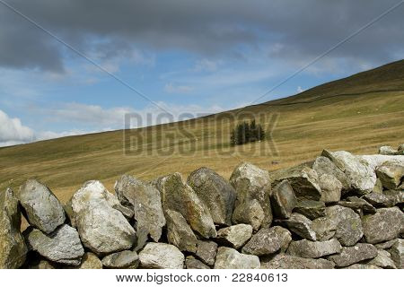 Stone Wall Moorland.