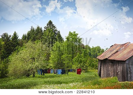 Laundry drying on clothesline on a beautiful summer day