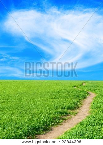 Background - A Herb, The Sky, Lane, Vertically.