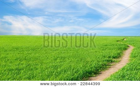 Background - A Herb, The Sky, Lane.