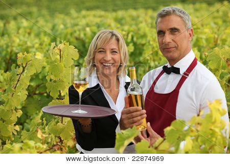 Wine growers on their crops