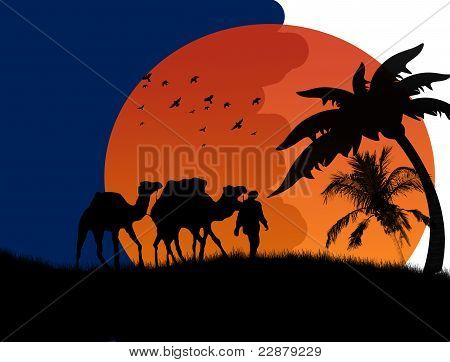 Sunset In The Sahara Desert