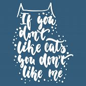 If You Dont Like Cats, You Dont Like Me - Hand Drawn Lettering Phrase For Animal Lovers On The Blu poster