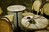 stock photo of loveless  - A forgotten rose on a table by lovers - JPG