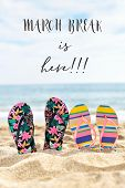 two pairs of colorful flip-flops on the sand of a quiet beach with the sea in the background and the poster