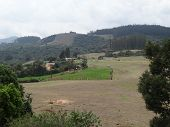 Awesome View Of Carrot Garden Near Hill ,ooty,india poster