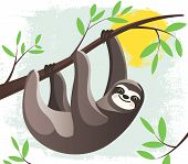 Cartoon Lazy Hanging Sloth In A Rain Forest  On A Tree Branch. Funny Childish Character. Stylized Fl poster