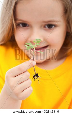 The wonder of life - little girl holding small seedling, closeup