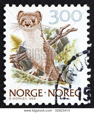 Postage stamp Norway 1989 Ermine, Stoat, Mustela Erminea