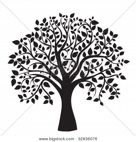 schwarz Tree Silhouette isolated on white background