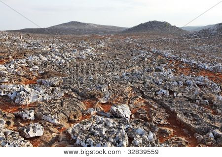 Karst field on Socotra Island
