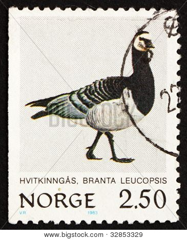 Estampilla Noruega 1983 Barnacla, Branta Leucopsis, pájaro