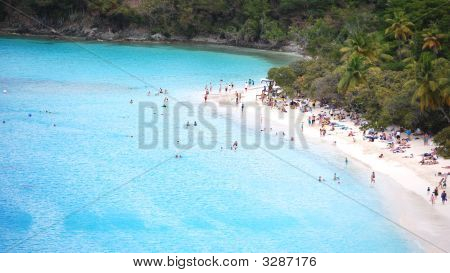 Caribbean Beach With Bathers On White Sands