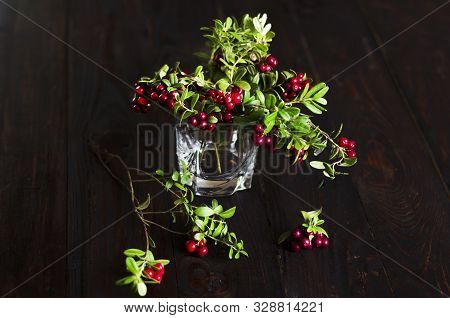 poster of Bouquet Of Twigs With Red Ripe Lingonberries In Glass On Wooden Background. Traditional Vegetation O