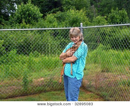 Motherless Fawn