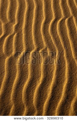 Sand Squiggles