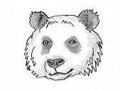 Retro Cartoon Style Drawing Of Head Of A Giant Panda , An Endangered Wildlife Species On Isolated Wh poster