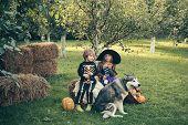 Halloween Kids Party In Garden With Pumpkins. Halloween Party With Children Wearing Halloween Costum poster