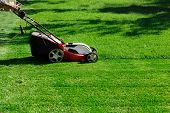 Gardener By Electric Lawn Mower Cutting Green Grass In The Garden. Garden Meadow Lawn Cutting. Worke poster