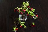 Bouquet Of Twigs With Red Ripe Lingonberries In Glass On Wooden Background. Traditional Vegetation O poster