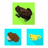 Vector Illustration Of Wildlife And Bog Icon. Set Of Wildlife And Reptile Vector Icon For Stock. poster