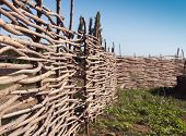 Wicker Fence Made Of Flexible Wood (willow Or Hazel). The Texture Of The Trunk Of A Natural Tree. Th poster