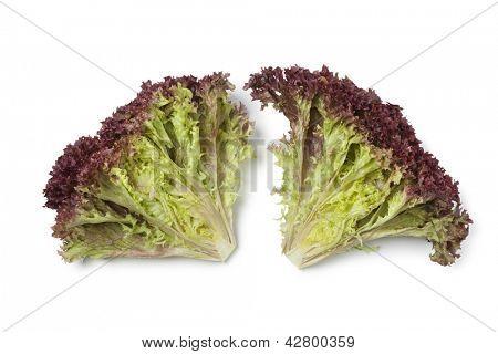 Inside Lollo Rosso lettuce on white background