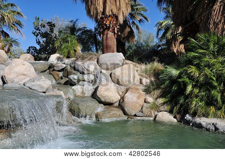 Oasis in Palm Desert