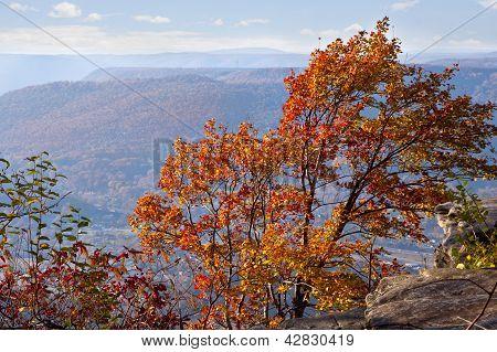 Chattanooga In Autumn