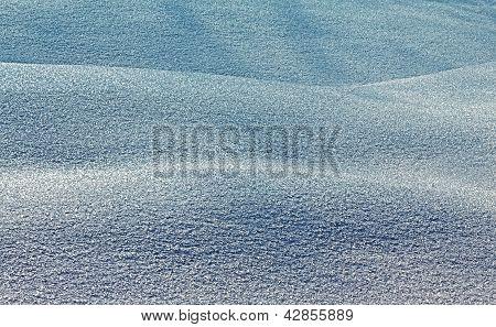 Snow Barkhans