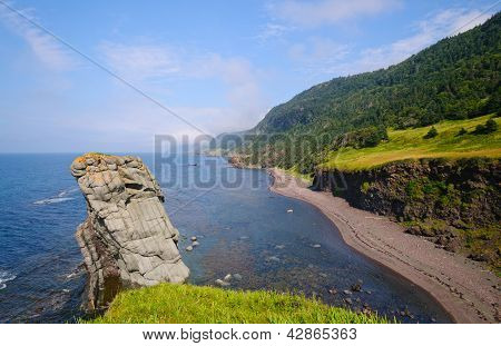 Remote Sea Shore In Newfoundland
