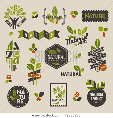 Nature-themed Labels And Badges With Green Leaves - Set Of Vector Design Elements
