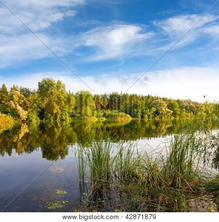 Nice evening summer scene on river