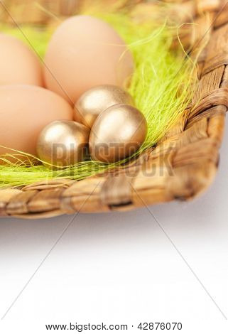 Brown and golden easter eggs are on braided plate with sisal green fibre, isolated on white